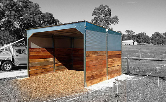 Large Concrete Shelter : Shelters horse australia